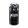 FIZZ Blueberry (Blaubeere) 4% 500ml Dose